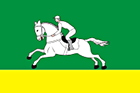 Flag_of_Cherepanovsky_rayon_(Novosibirskya_oblast)
