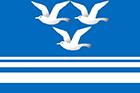 Flag_of_Chistoozyorny_rayon_(Novosibirsk_oblast)