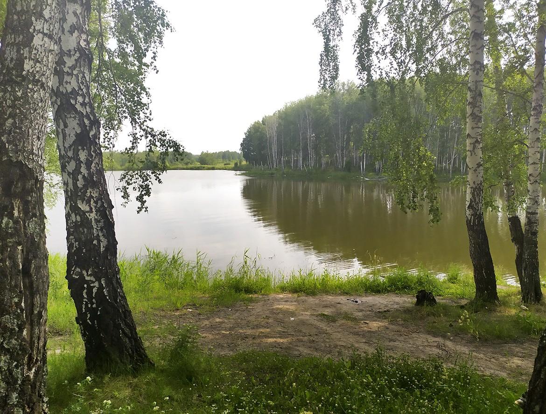 1_moshkovo